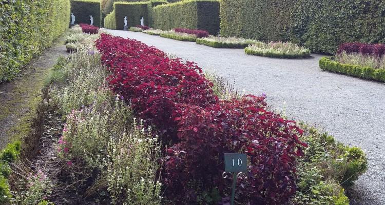 Am 25. August besuchte die Akademie 50+ Namur und die Gärten von Annevoie