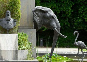 30.10.2019: Tervuren, Afrikamuseum und Park
