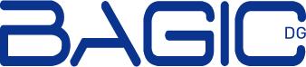 Abschlussarbeiten der BAGIC-Ausbildung